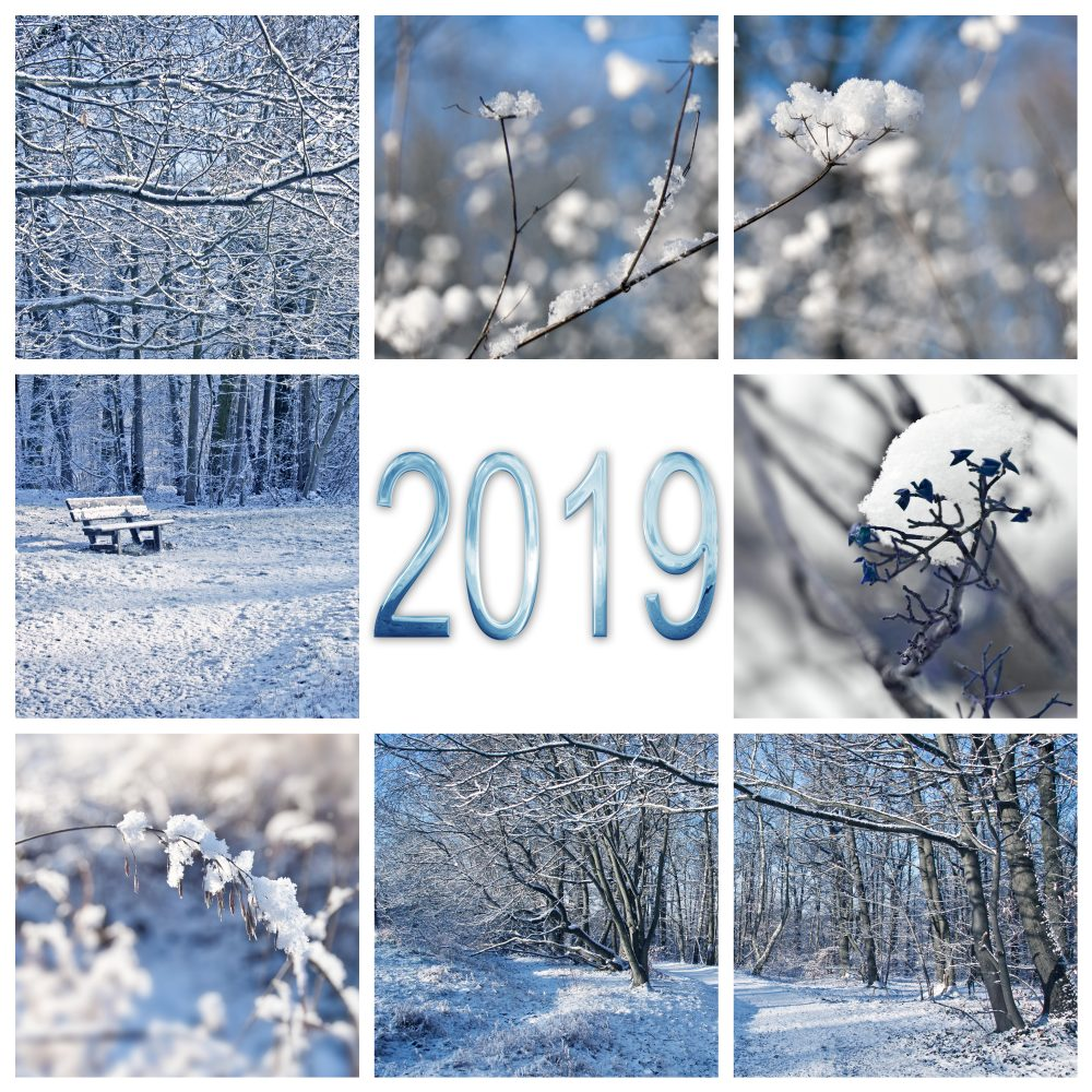 2019, snow and winter landscapes square greeting card